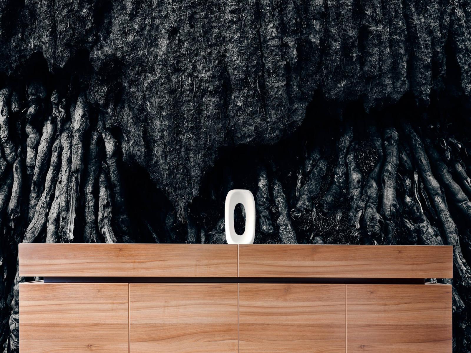 Zwart Wit behang - Boom, zwart-wit - Hal 20