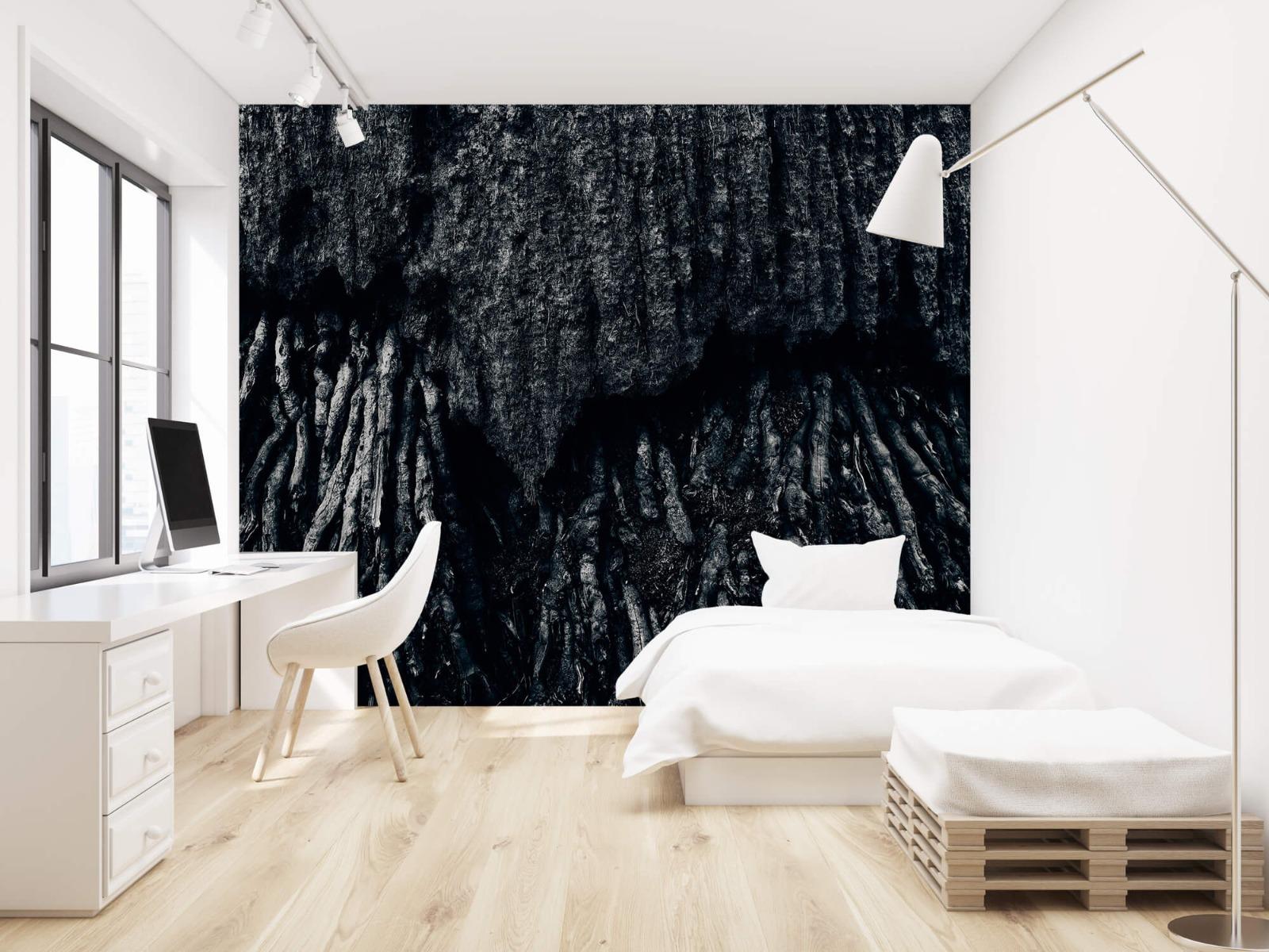 Zwart Wit behang - Boom, zwart-wit - Hal 22