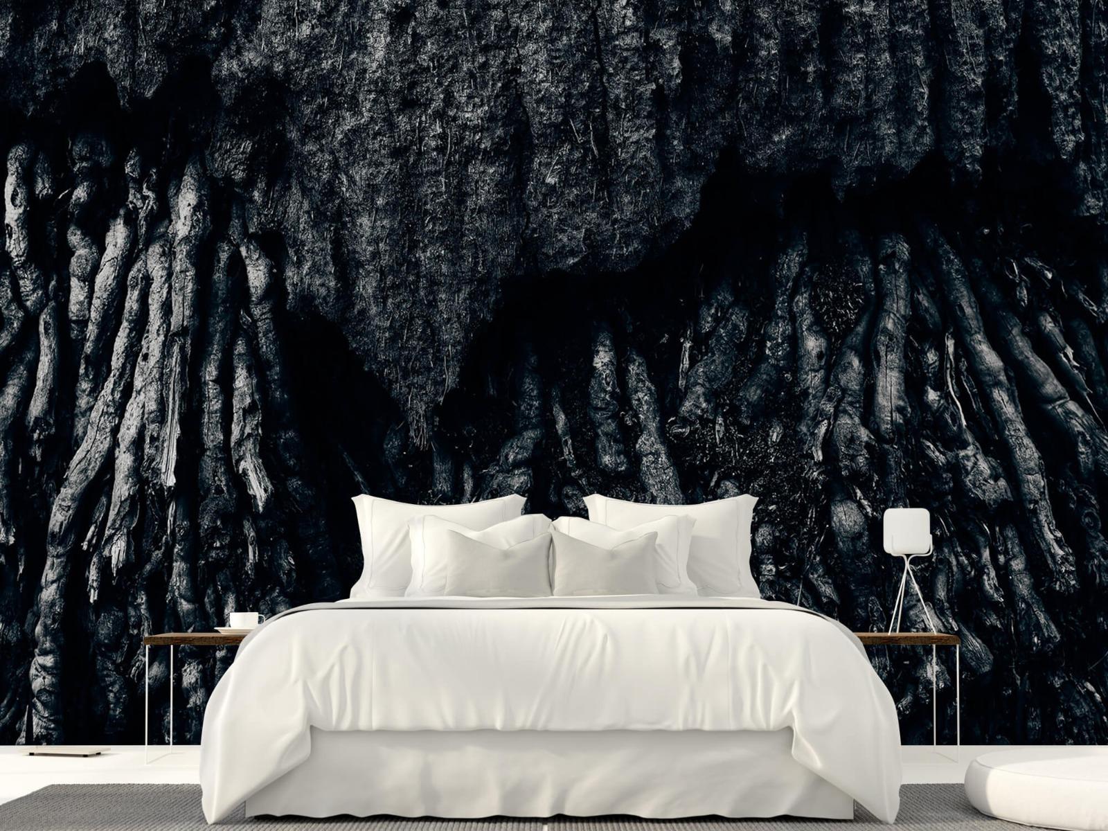 Zwart Wit behang - Boom, zwart-wit - Hal 23
