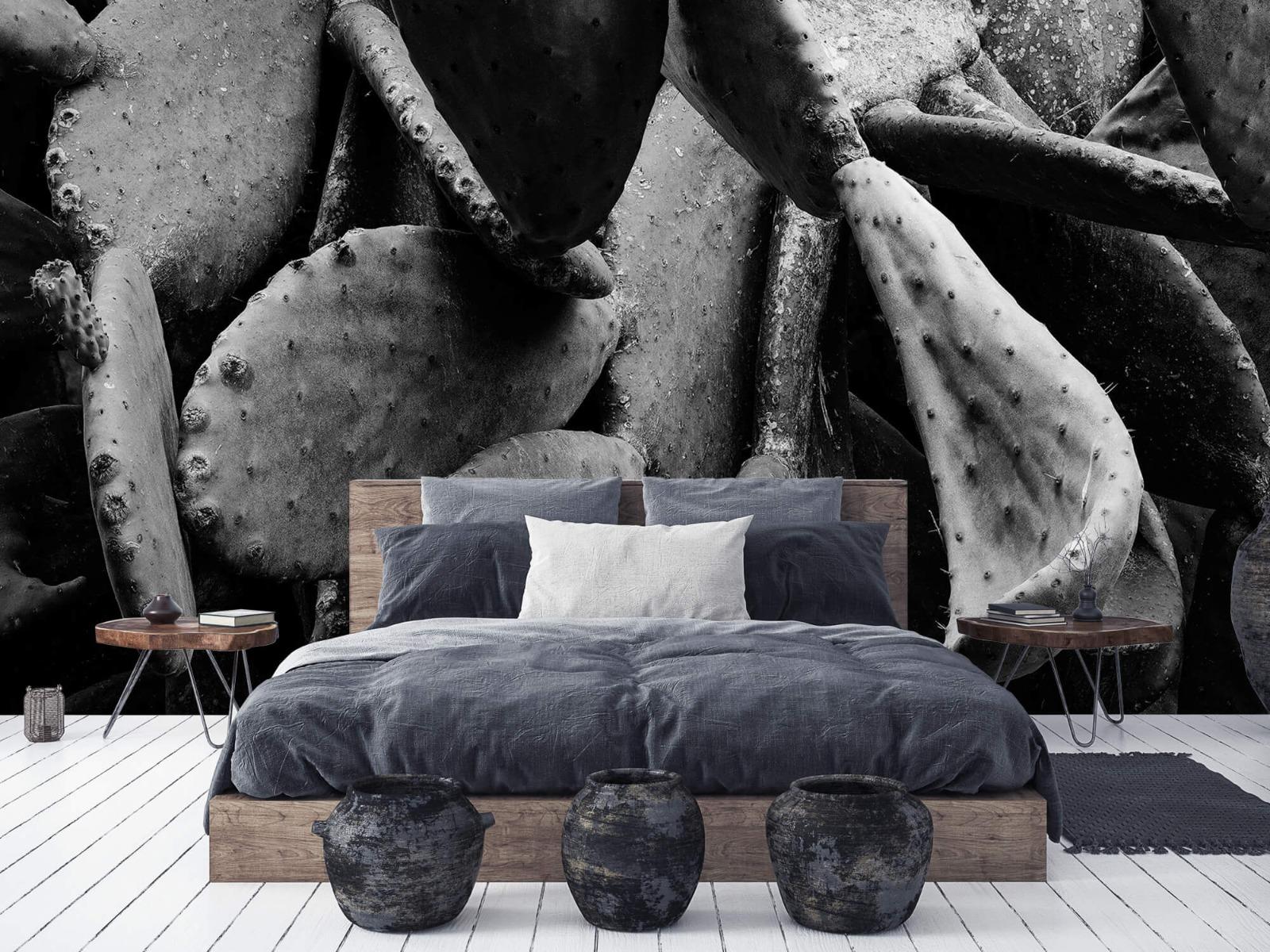 Zwart Wit behang - Cactus, zwart-wit - Slaapkamer 6