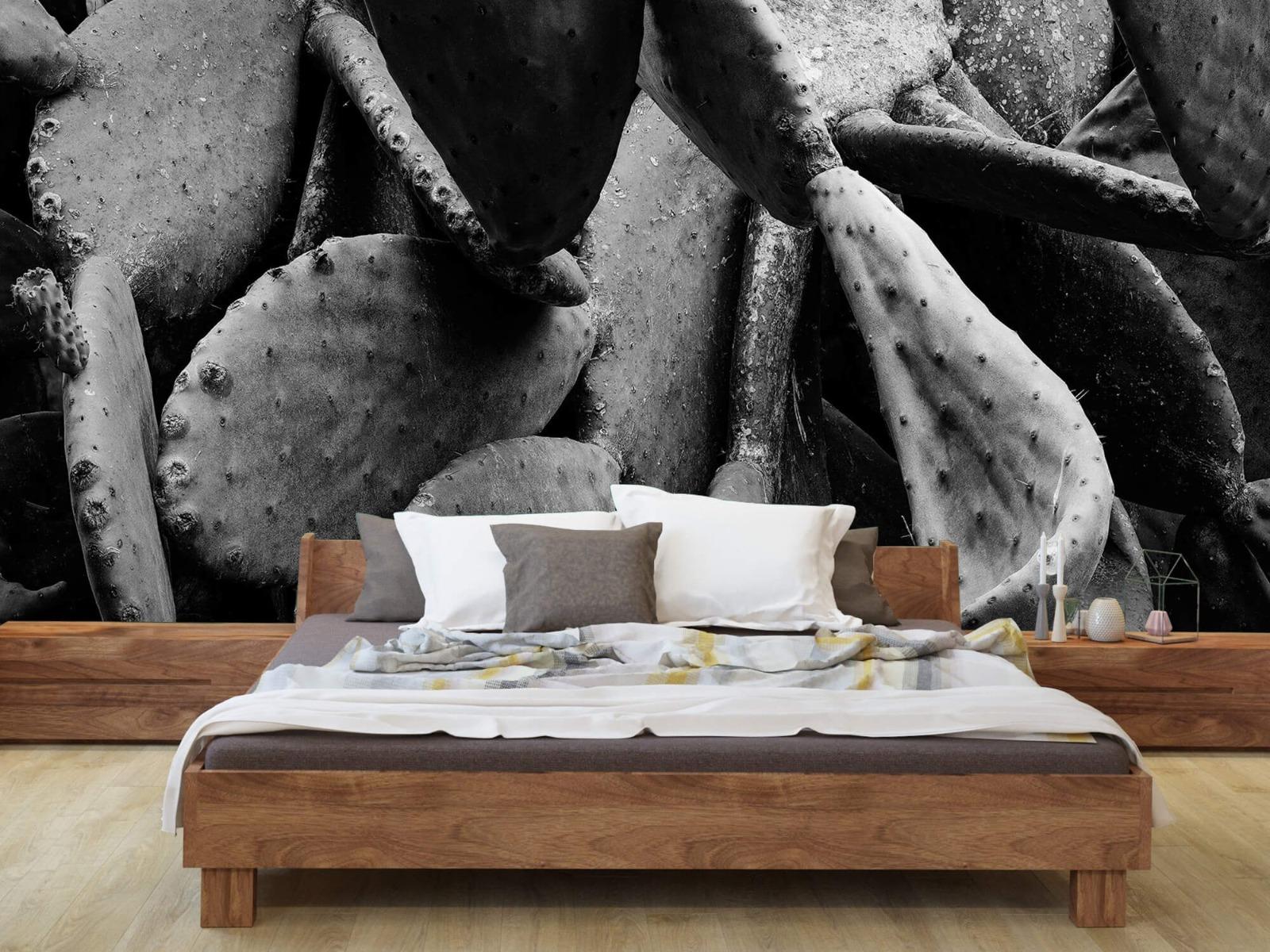 Zwart Wit behang - Cactus, zwart-wit - Slaapkamer 7