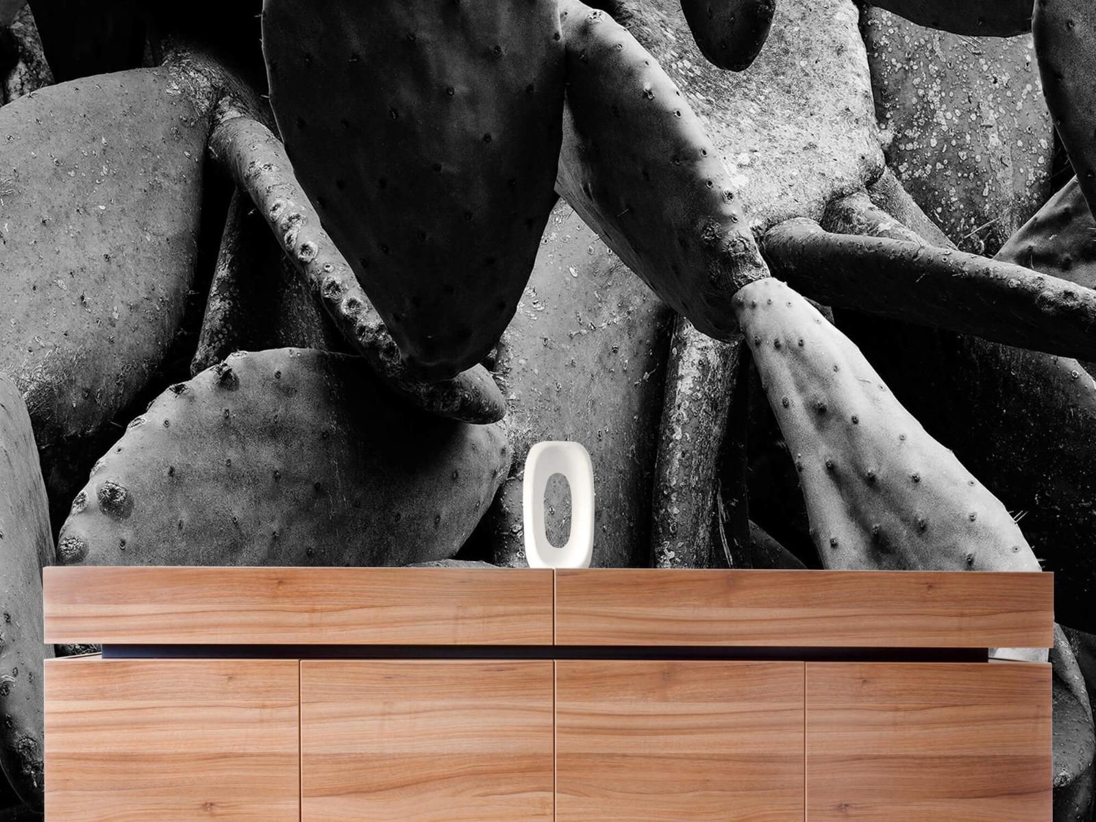 Zwart Wit behang - Cactus, zwart-wit - Slaapkamer 20