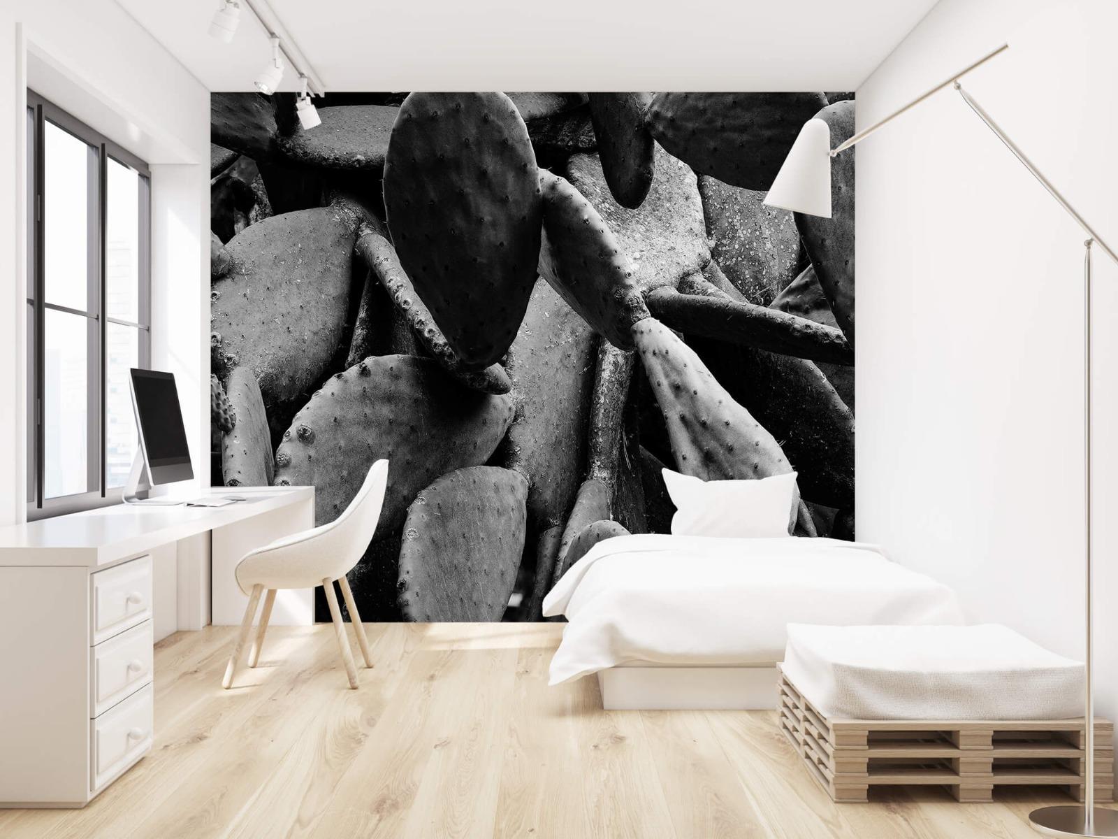 Zwart Wit behang - Cactus, zwart-wit - Slaapkamer 22