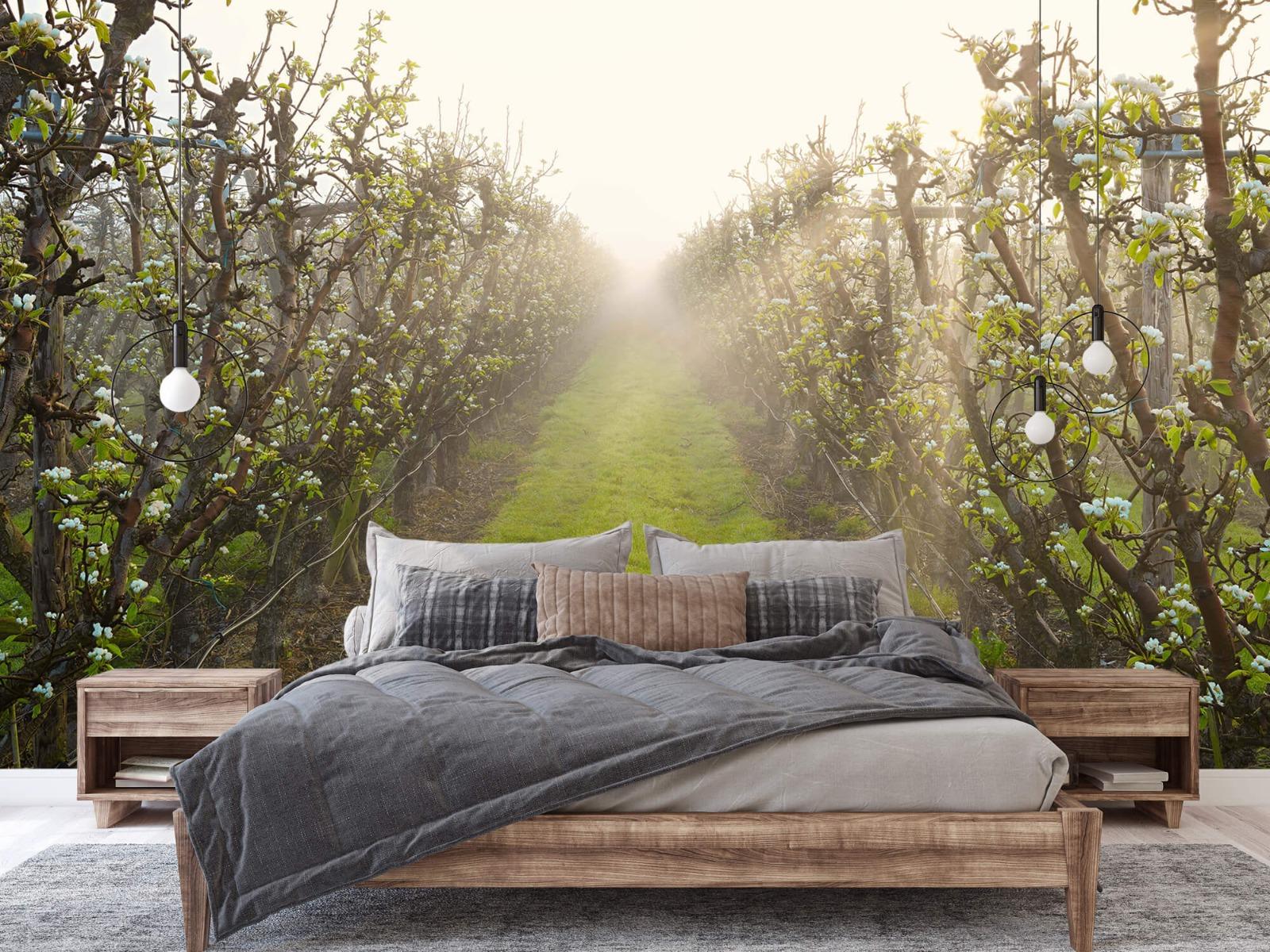 Bomen - Perenbloesem in mist - Slaapkamer 2