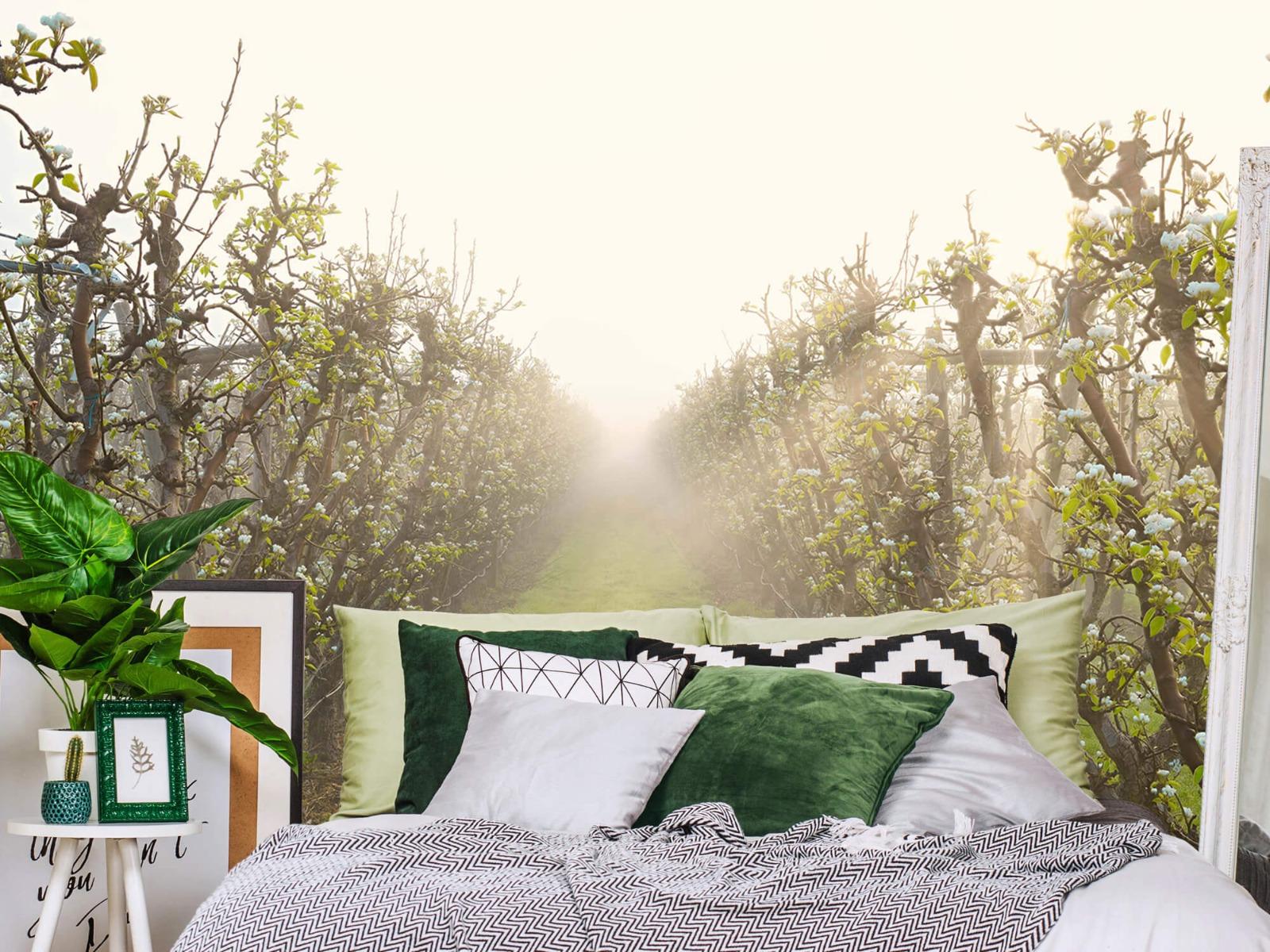 Bomen - Perenbloesem in mist - Slaapkamer 13