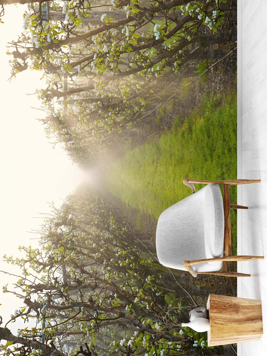 Bomen - Perenbloesem in mist - Slaapkamer 19