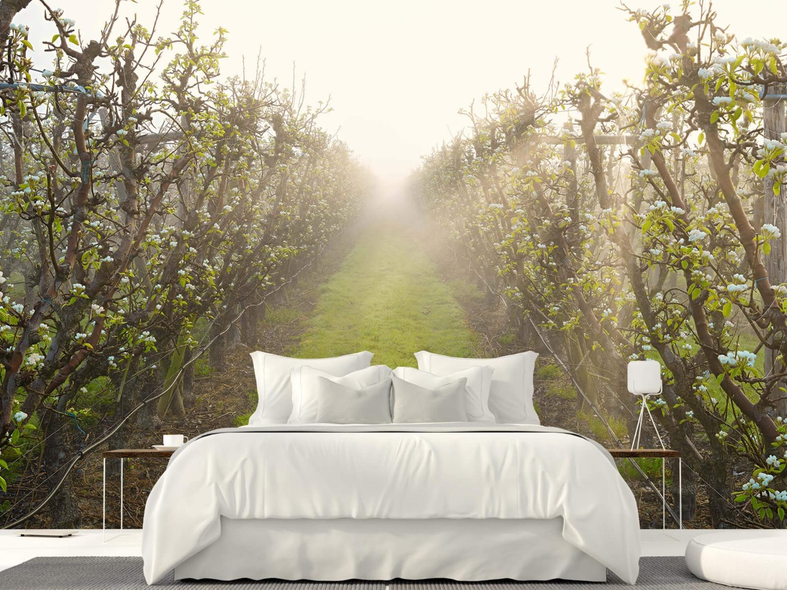Bomen - Perenbloesem in mist - Slaapkamer 1