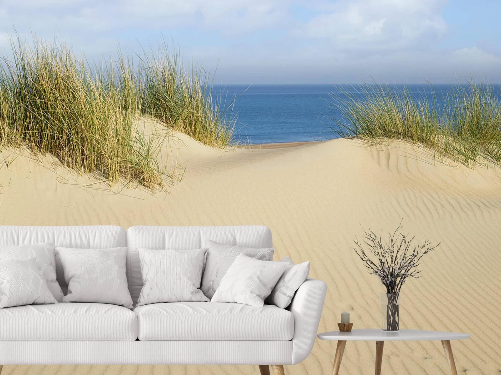 Stranden - Duin doorgang naar het strand - Woonkamer 3