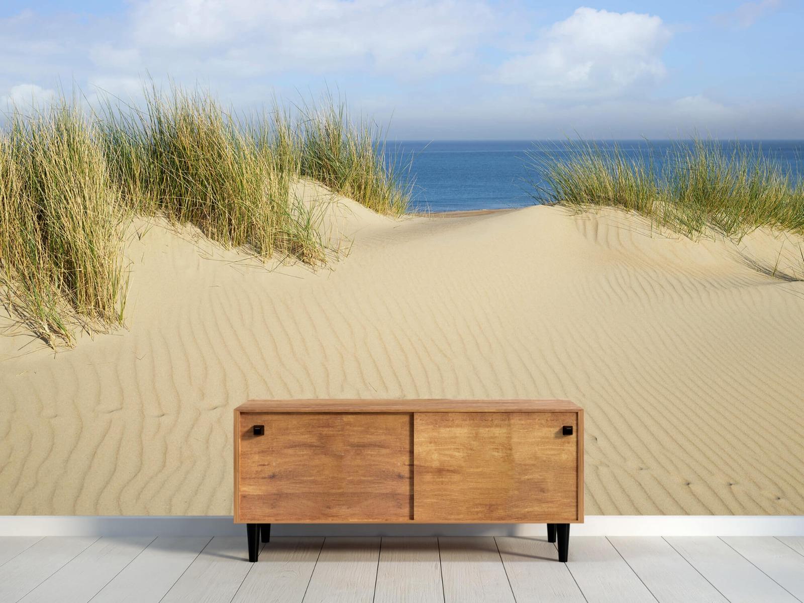 Stranden - Duin doorgang naar het strand - Woonkamer 9