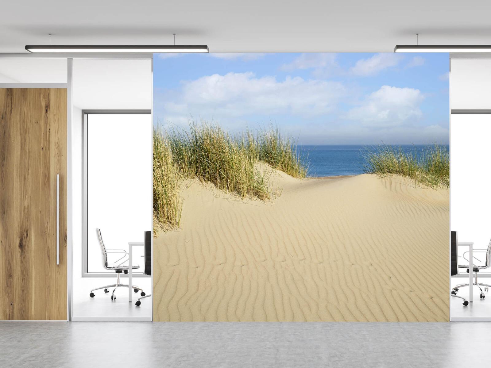 Stranden - Duin doorgang naar het strand - Woonkamer 11