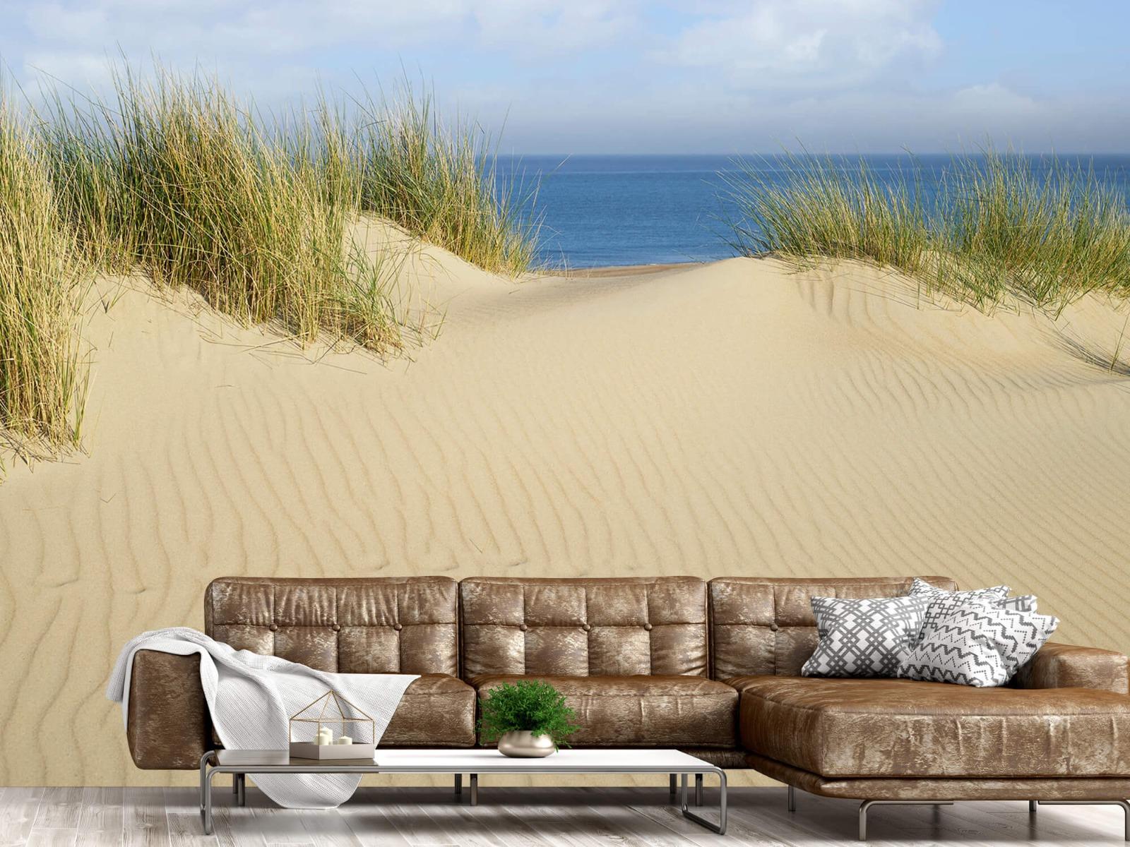 Stranden - Duin doorgang naar het strand - Woonkamer 14