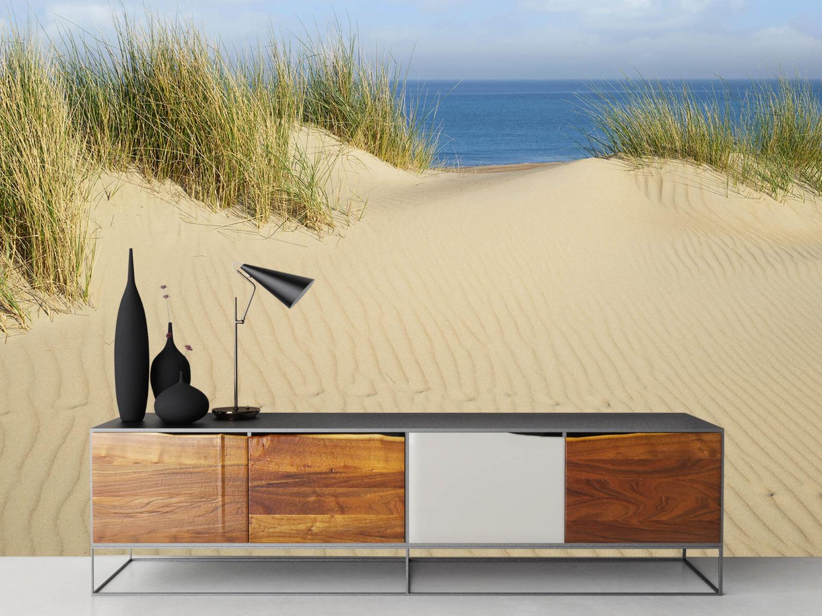 Stranden - Duin doorgang naar het strand - Woonkamer 16