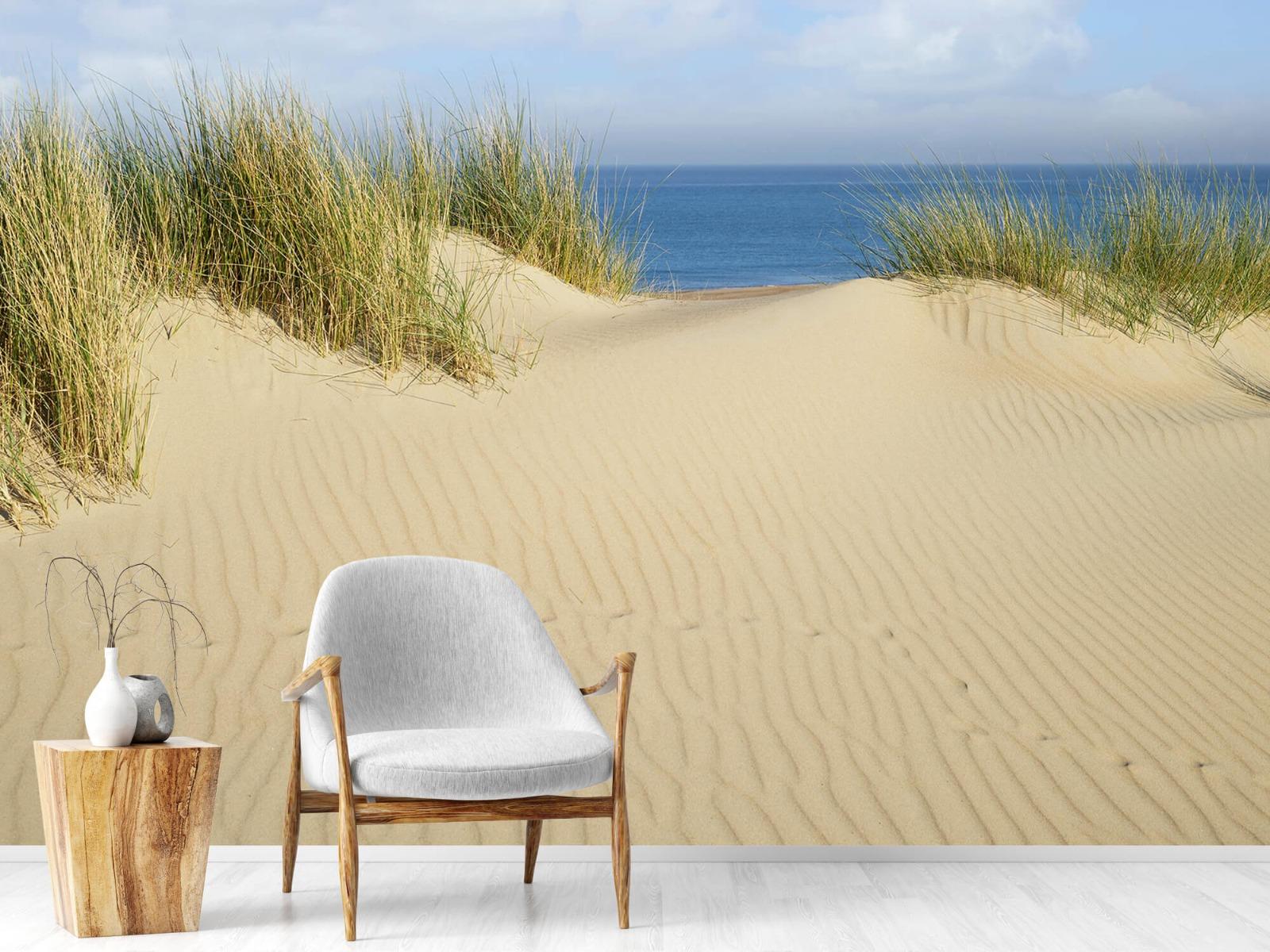 Stranden - Duin doorgang naar het strand - Woonkamer 18