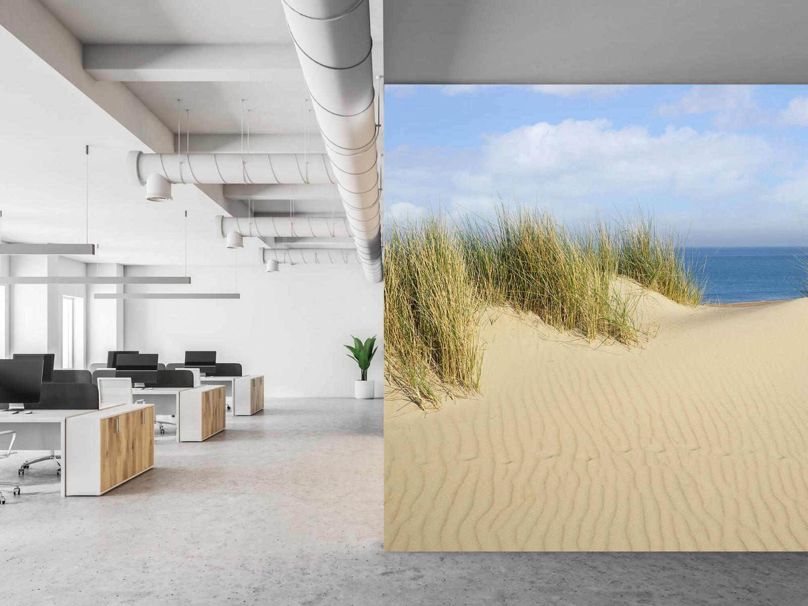 Stranden - Duin doorgang naar het strand - Woonkamer 21
