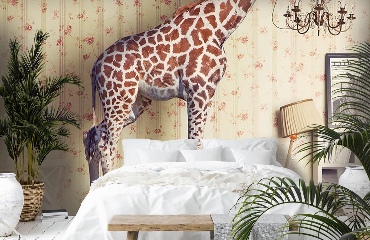 3D Giraffe in de woonkamer 6