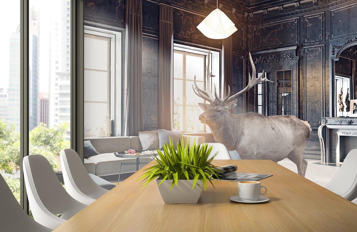 3D Eland in een huis 1