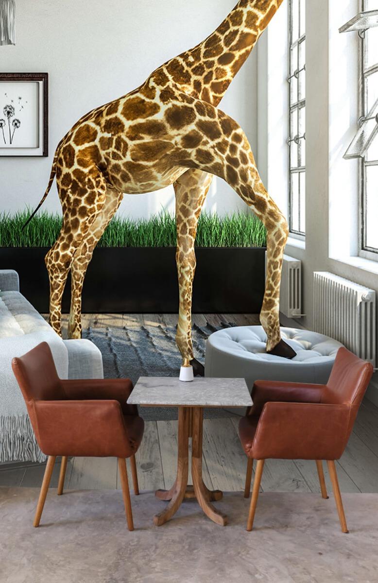Dieren - Glurende giraffe - Kantoor 4