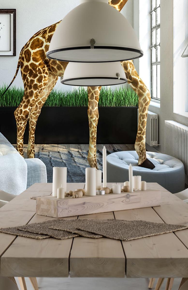 Dieren - Glurende giraffe - Kantoor 6