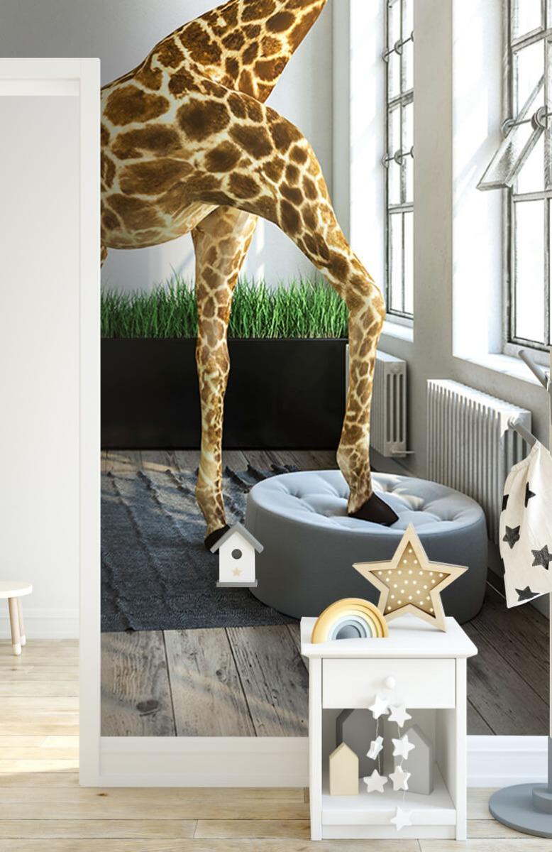 Dieren - Glurende giraffe - Kantoor 8