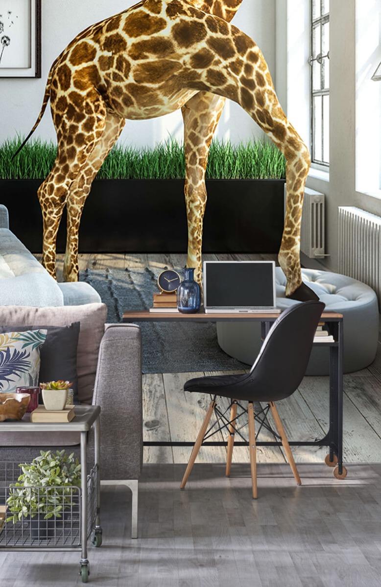 Dieren - Glurende giraffe - Kantoor 9
