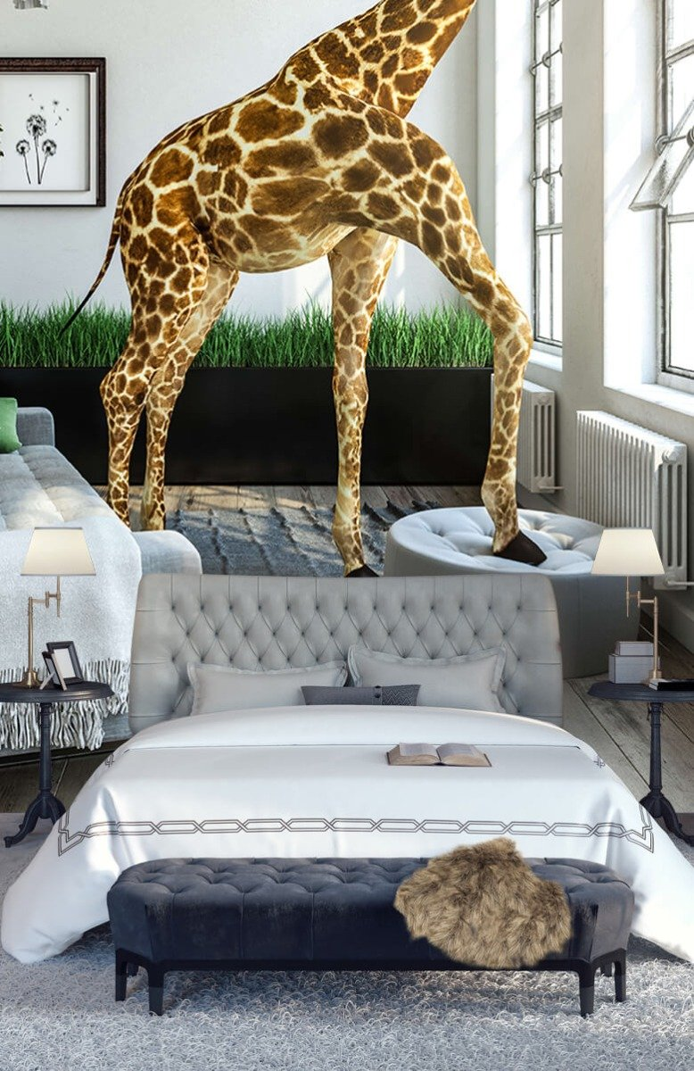 Dieren - Glurende giraffe - Kantoor 14