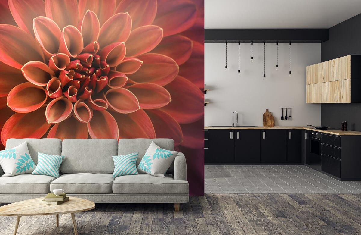 Bloemen, planten en bomen Gekleurde dahlia 1