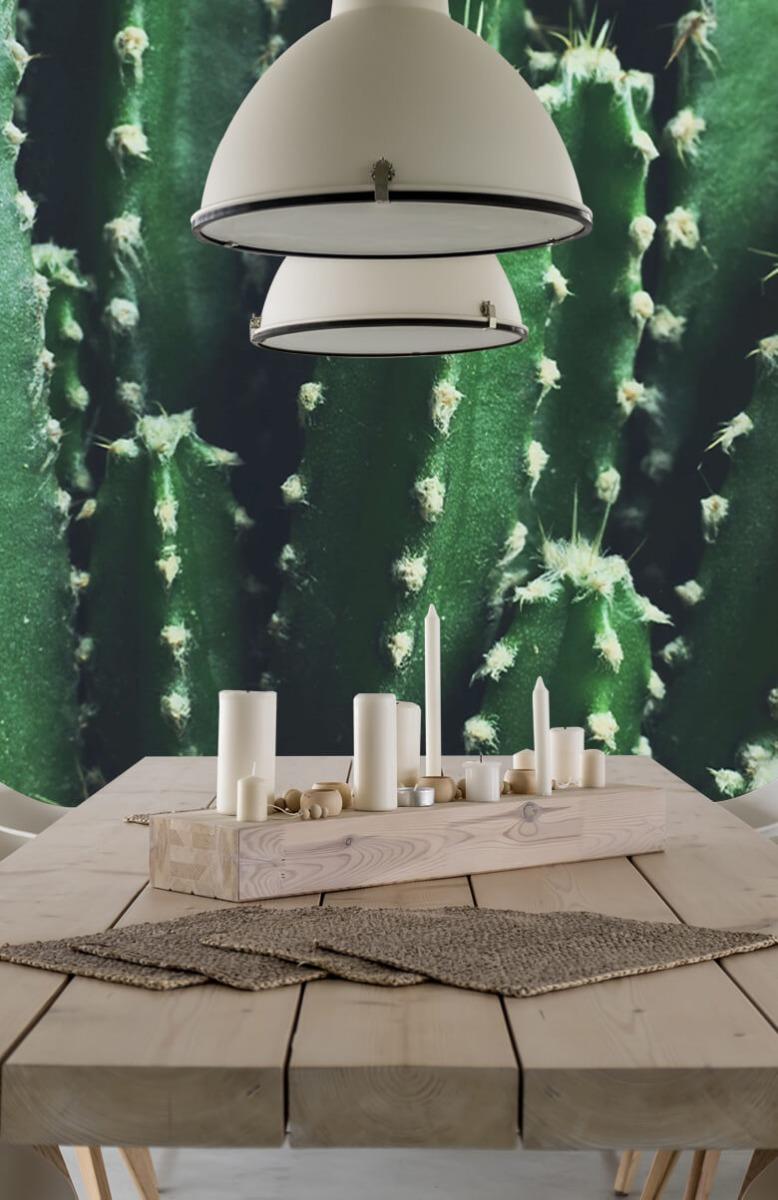 Bloemen, planten en bomen Close-up groene cactus 1
