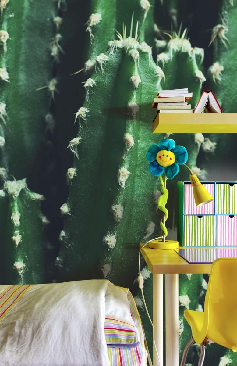 Bloemen, planten en bomen Close-up groene cactus 7