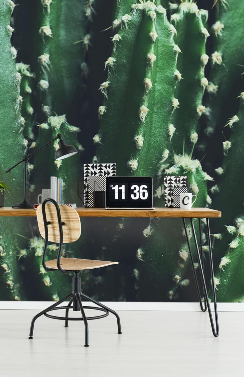 Bloemen, planten en bomen Close-up groene cactus 9
