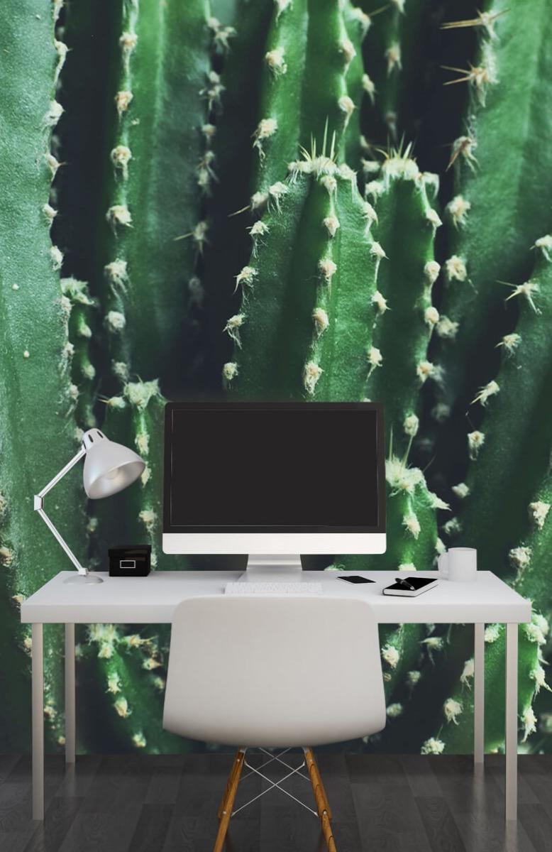 Bloemen, planten en bomen Close-up groene cactus 10