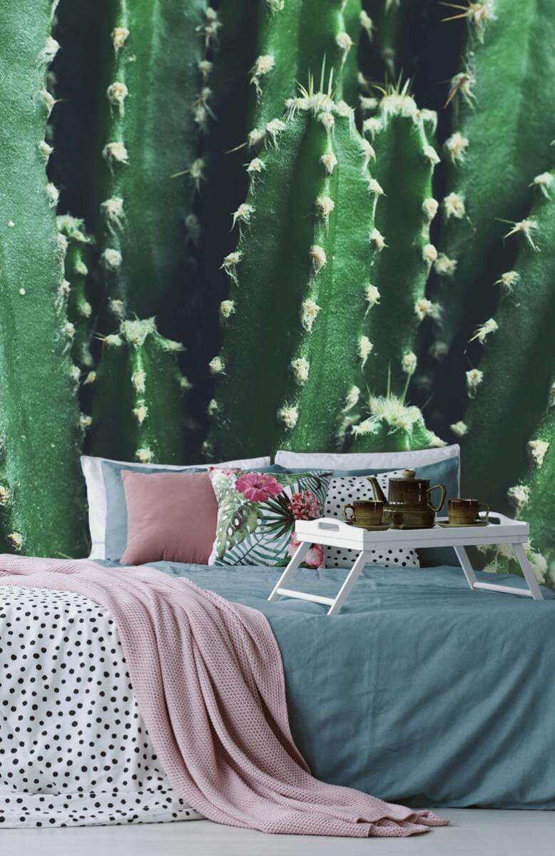 Bloemen, planten en bomen Close-up groene cactus 12