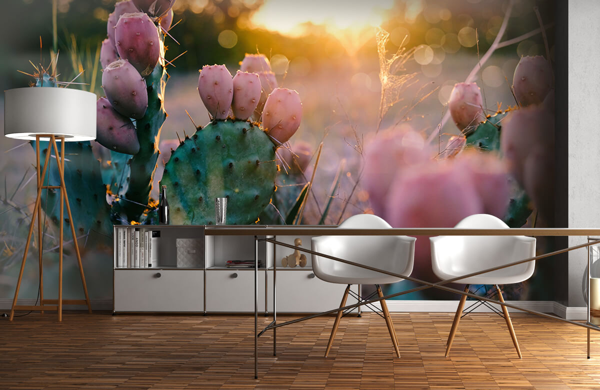 Bloemen, planten en bomen Cactus met bloemen 11