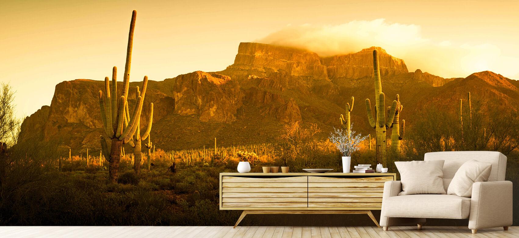 Bloemen, planten en bomen Woestijn met cactussen 1