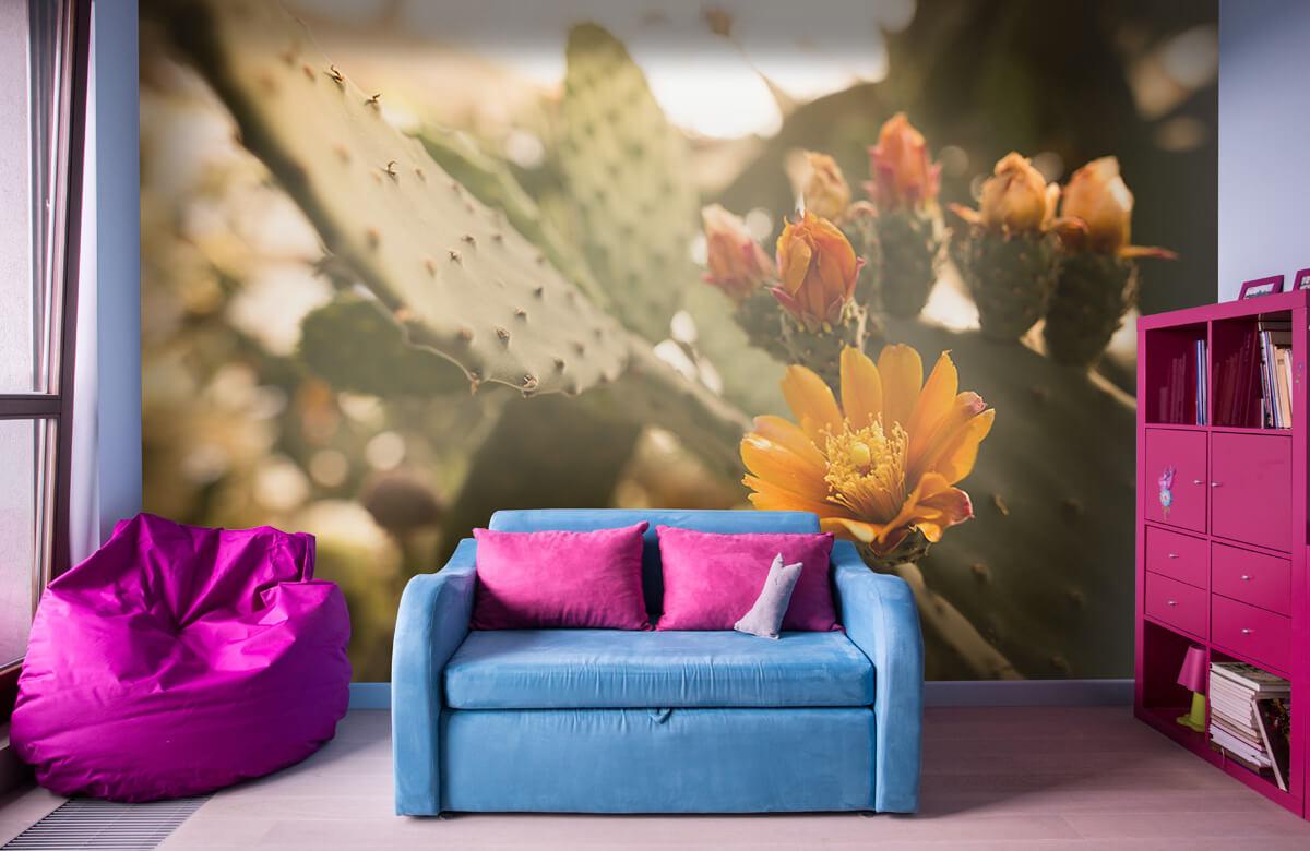 Bloemen, planten en bomen Oranje cactus bloemen 10
