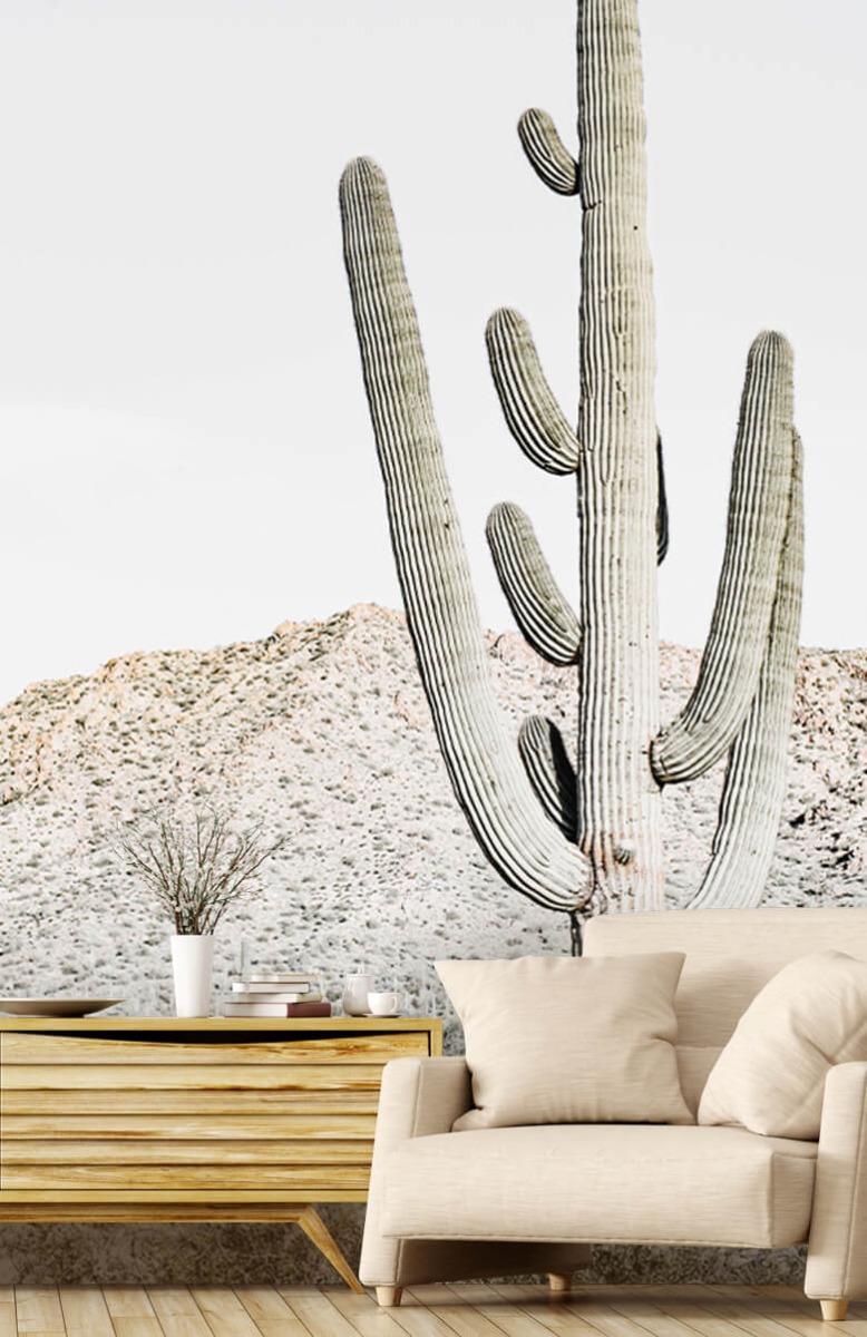 Bloemen, planten en bomen Hoge cactus 3