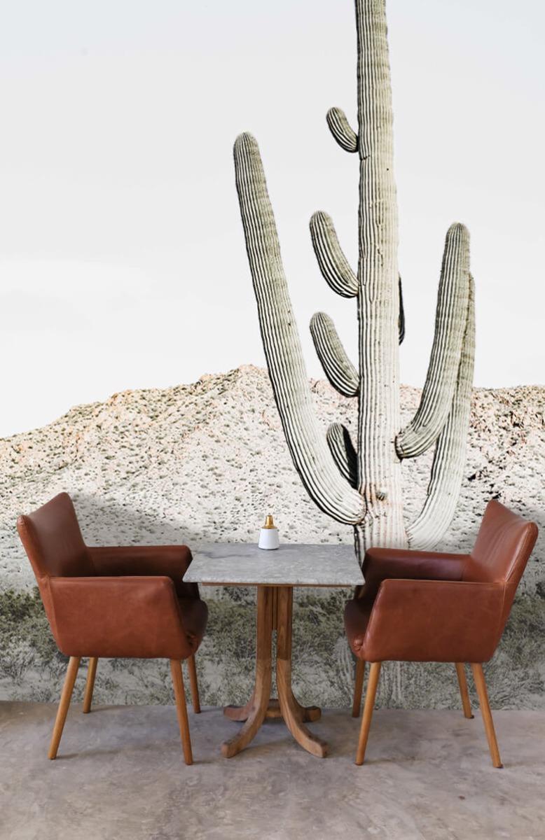 Bloemen, planten en bomen Hoge cactus 5