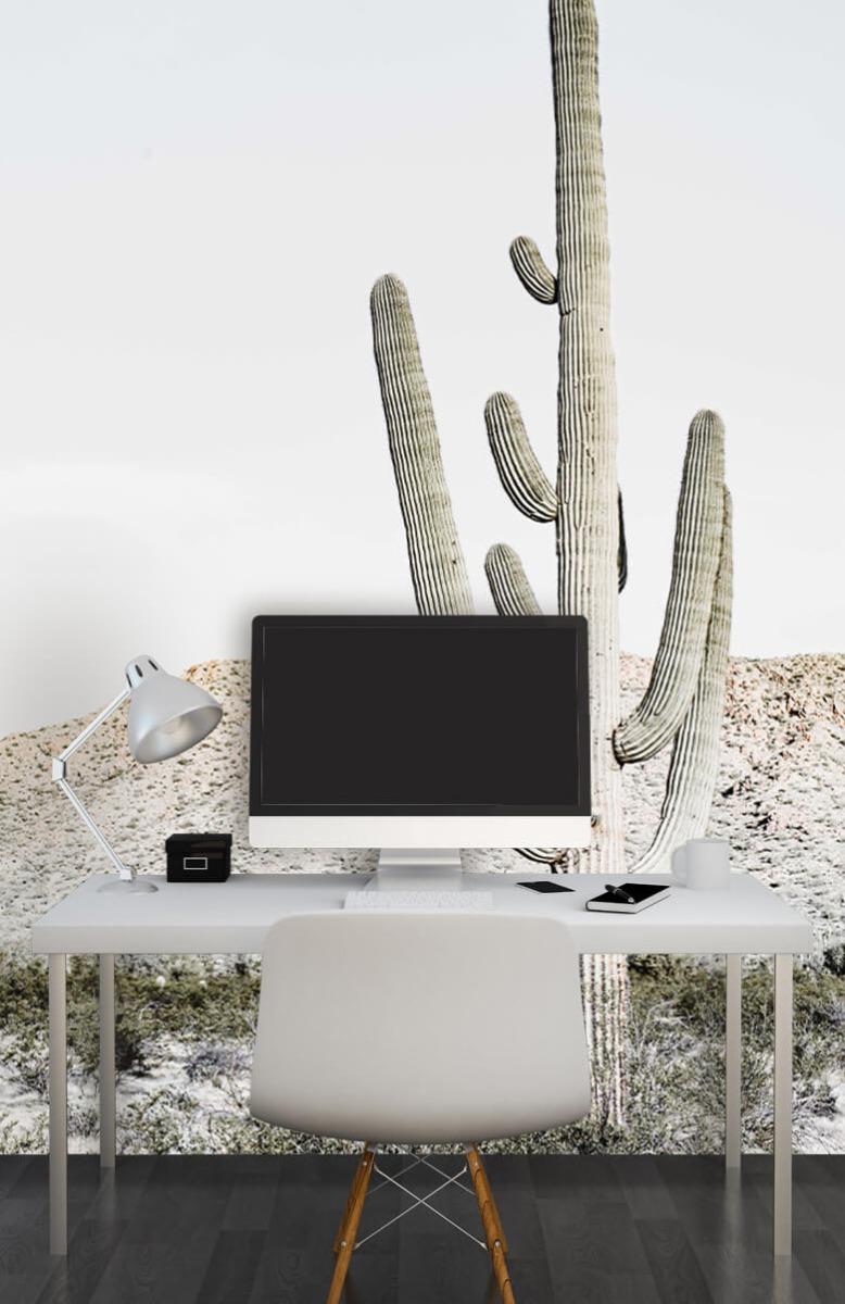 Bloemen, planten en bomen Hoge cactus 1