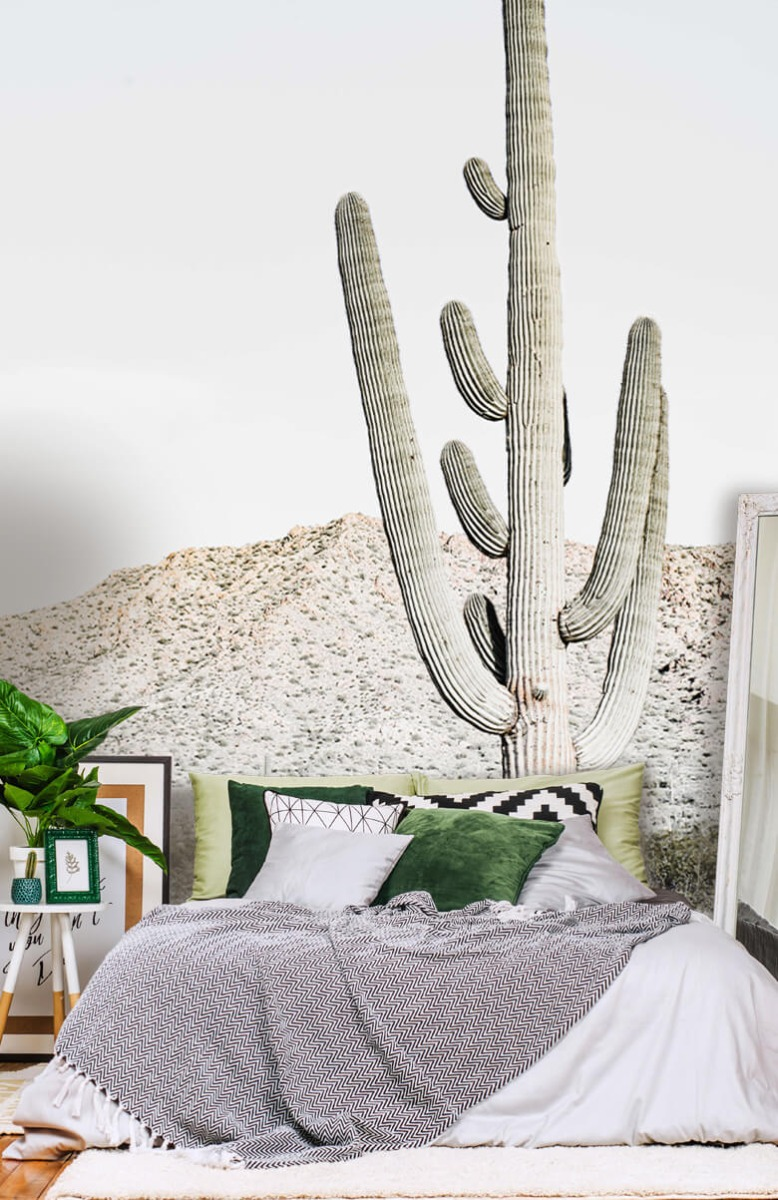 Bloemen, planten en bomen Hoge cactus 13