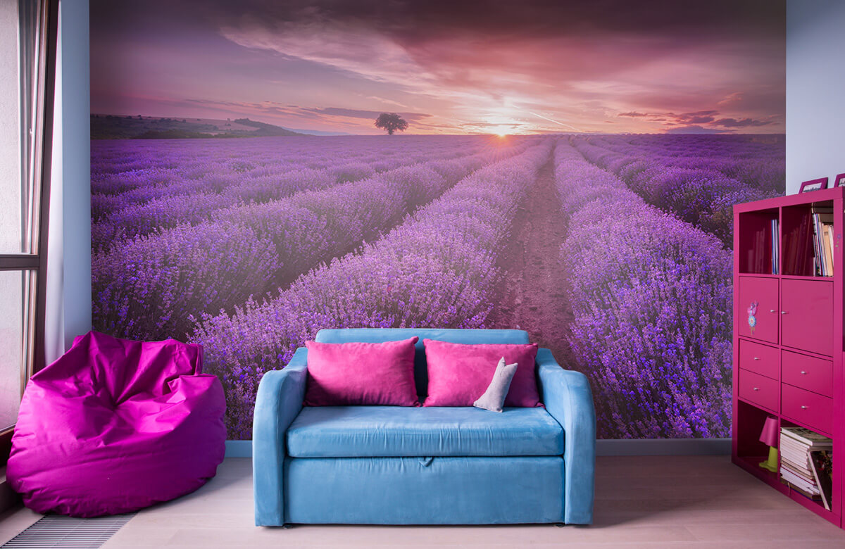Bloemen, planten en bomen Veld vol lavendel 11