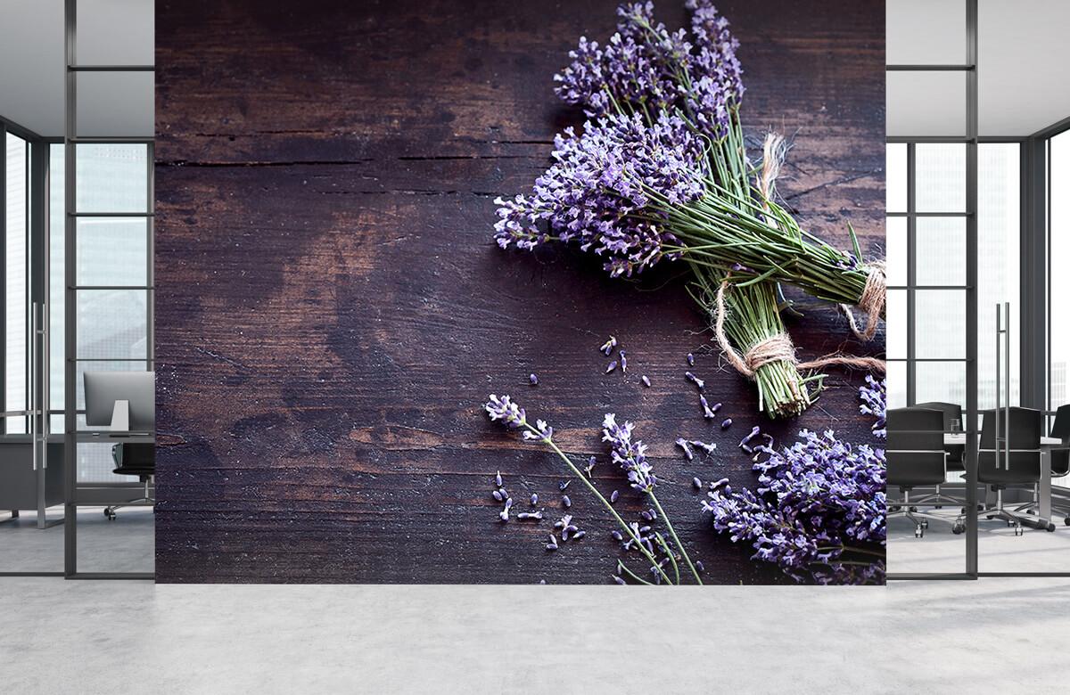 Bloemen, planten en bomen Bosjes lavendel 4