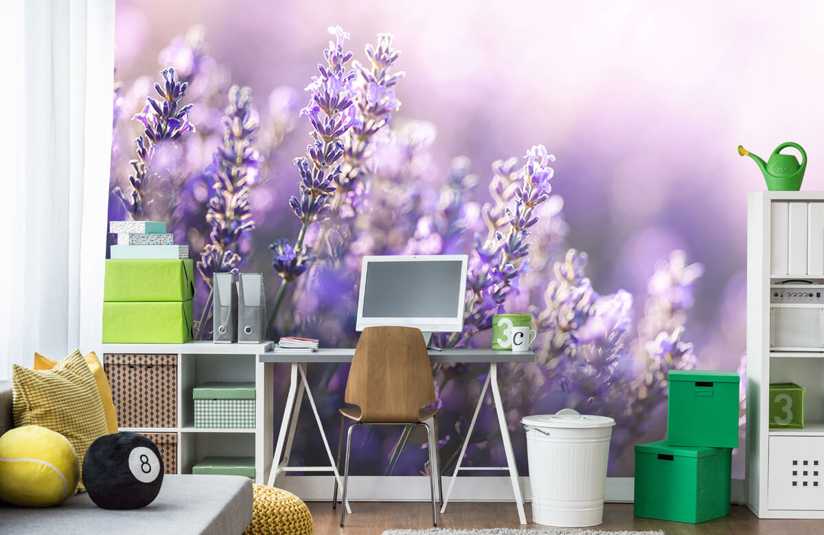 Bloemen, planten en bomen Dromerig lavendel 9