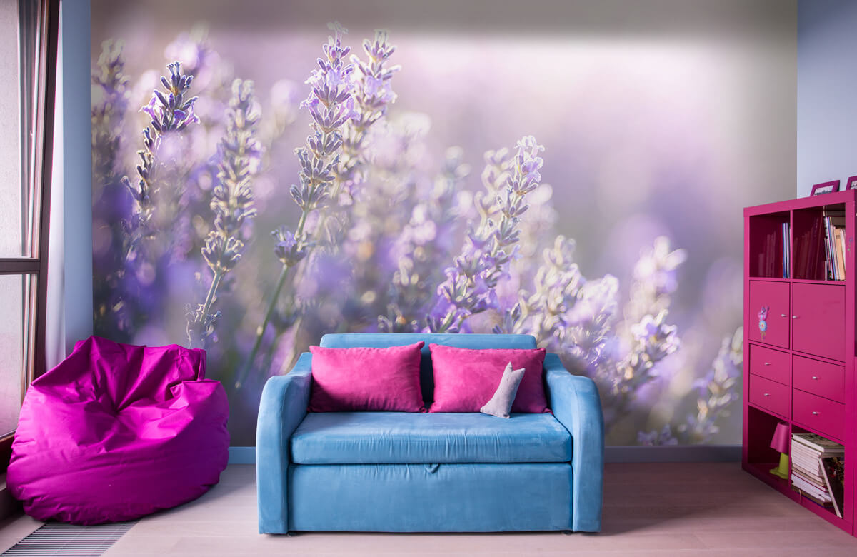 Bloemen, planten en bomen Dromerig lavendel 10