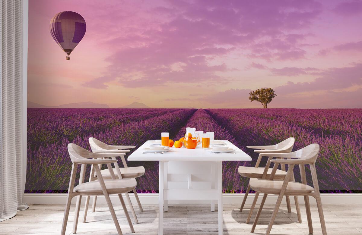 Bloemen, planten en bomen Lavendel veld en luchtballon 2