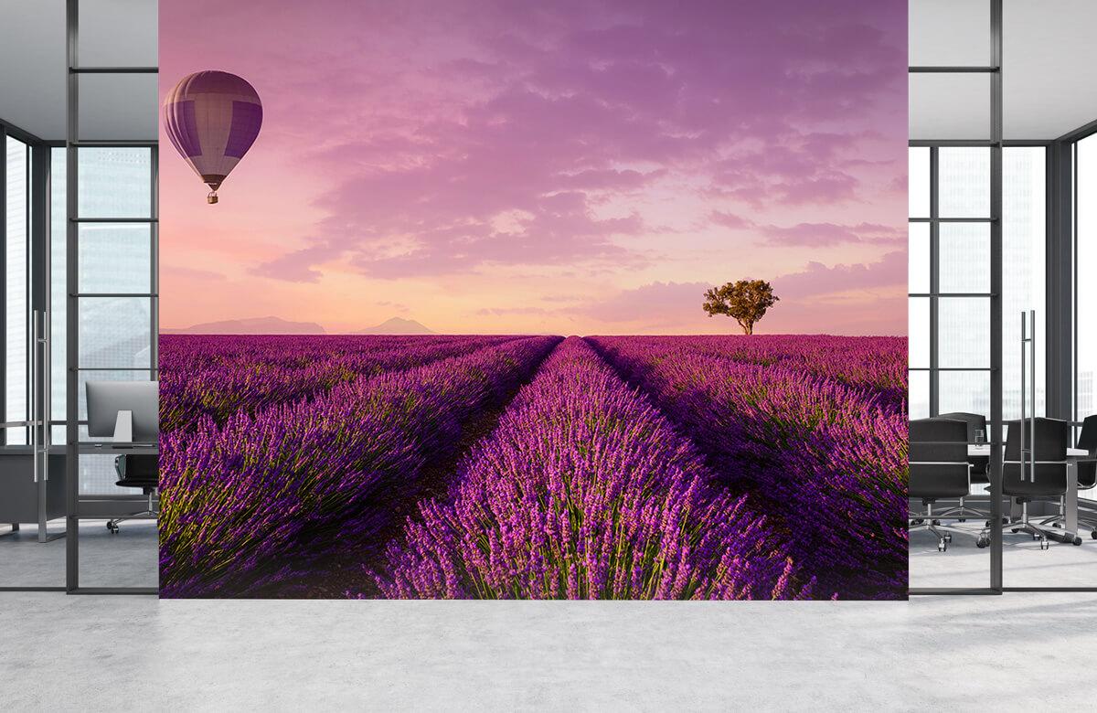 Bloemen, planten en bomen Lavendel veld en luchtballon 1