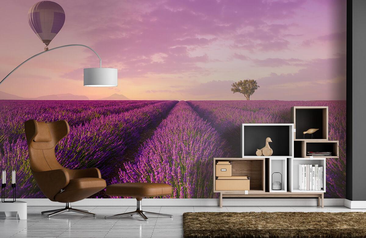 Bloemen, planten en bomen Lavendel veld en luchtballon 4