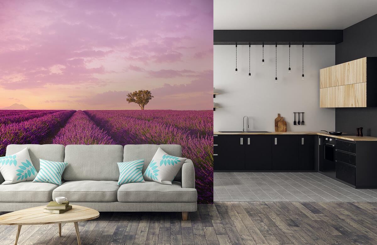 Bloemen, planten en bomen Lavendel veld en luchtballon 5