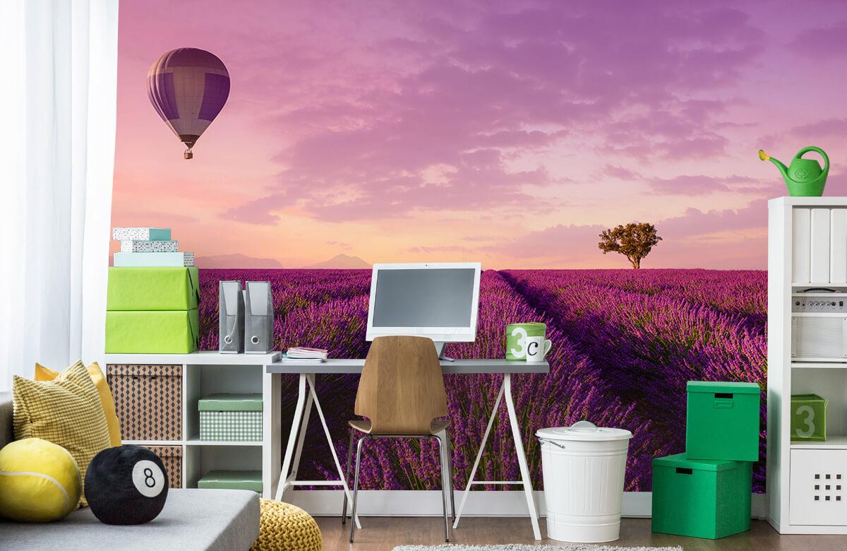 Bloemen, planten en bomen Lavendel veld en luchtballon 9