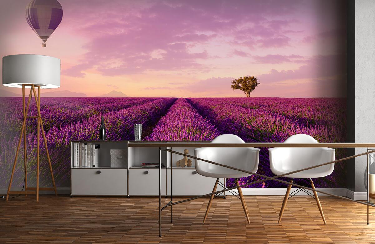 Bloemen, planten en bomen Lavendel veld en luchtballon 11