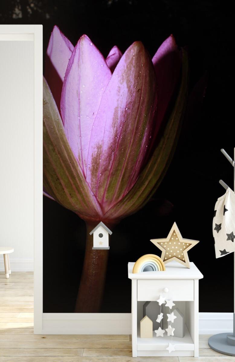 Bloemen, planten en bomen Zijkant lotusbloem 6