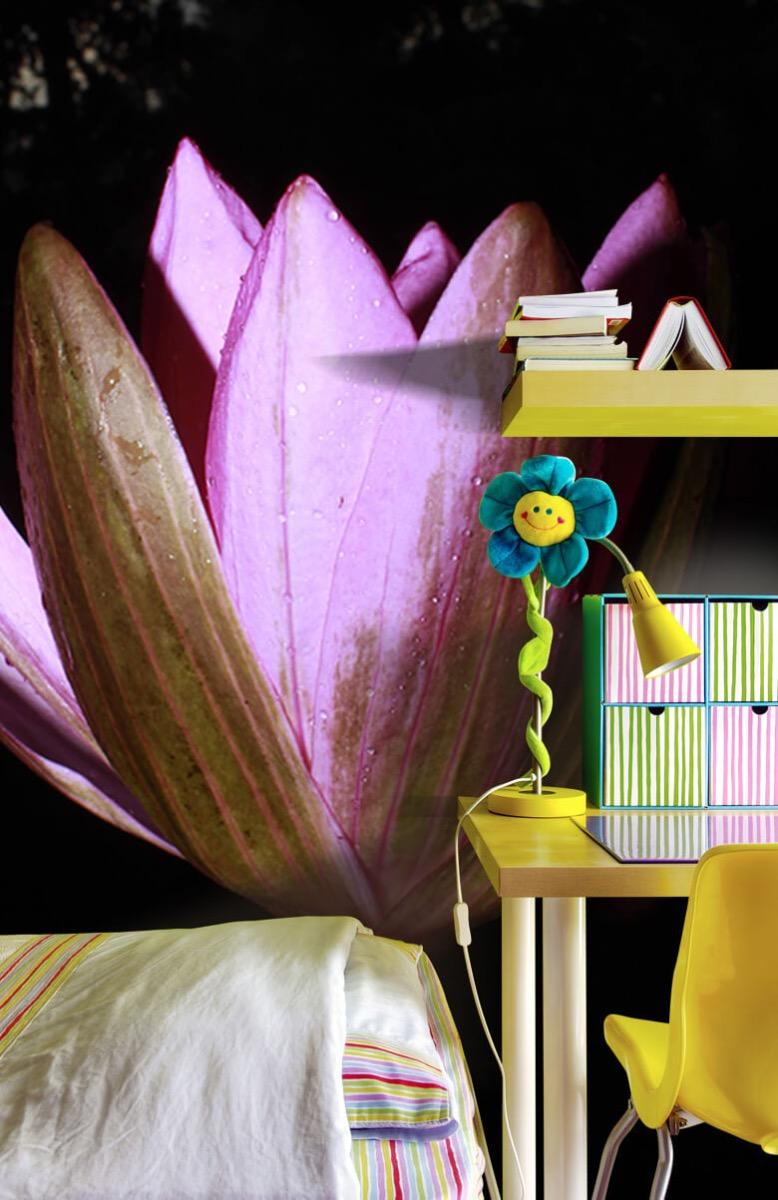 Bloemen, planten en bomen Zijkant lotusbloem 7
